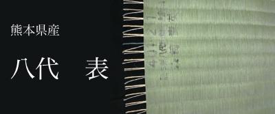 最高級 熊本県産八代表